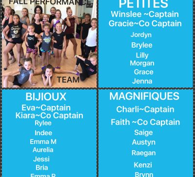 Introducing the 2017-2018 Fall Performance Team